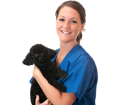 Woman Vet with Dog