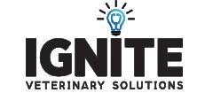 IGNITE image/logo